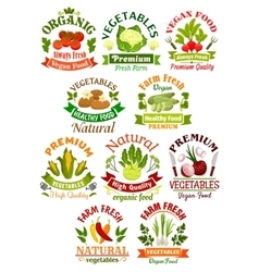 Vegetables labels set for food industry vector