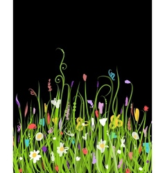 Night meadow for your design vector image