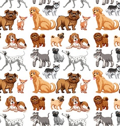 Seamless dogs vector image