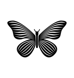 Butterfly with stripes on wings icon simple style vector