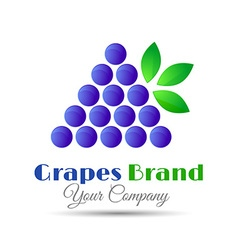 logo design template Branch of grape with leaves vector image