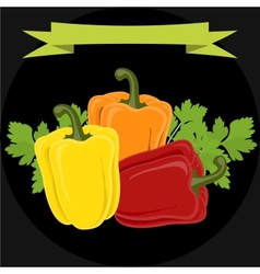 Peppers and parsley isolated on black background vector image
