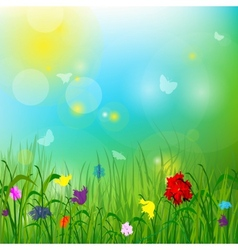 Summer meadow with butterflies vector image vector image