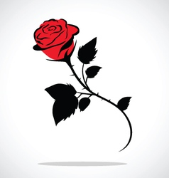 Valentine rose vector