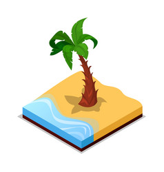 green palm tree on beach isometric 3d icon vector image