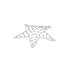 Starfish icon isometric 3d style vector image vector image