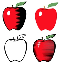 Apple line variant vector