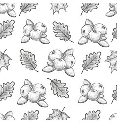 Seamless pattern with cranberries and leaves vector