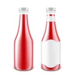 Set of blank glass tomato ketchup bottle isolated vector