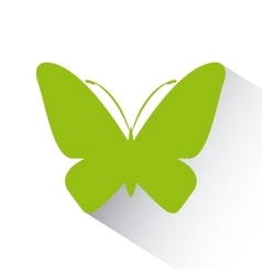 Green butterfly icon vector