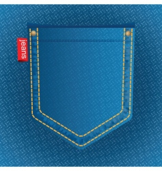 Jeans pocket vector