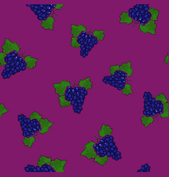 Seamless pattern grapes on dark lilac background vector