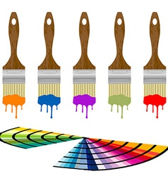Set of color samples and paintbrushes over white vector image