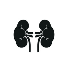Simple icon of human kidneys Isolated vector image vector image