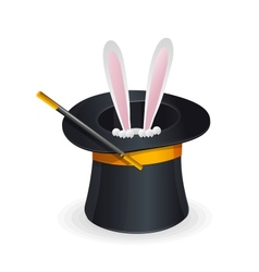 Magic hat and rabbit vector