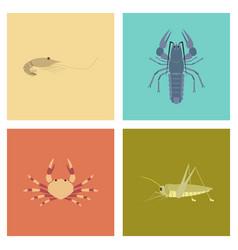 Assembly flat shrimp lobster crab vector