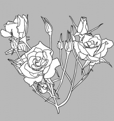 hand drawn floral vector image