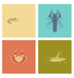 assembly flat shrimp lobster crab vector image