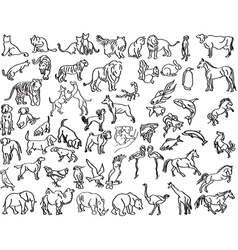 Sketches of animals vector image vector image