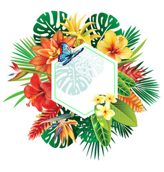 Banner from tropical plants vector