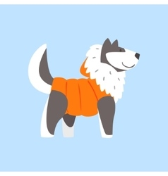 Husky Dog In Padded Coat Arctic Animal Dressed In vector image vector image