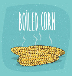Isolated whole boiled corn ears with hot steam vector