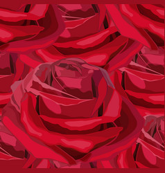 Seamless blooming red flower roses vector