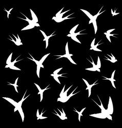 Bird flight vector