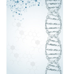 dna and molecules on isolated background vector image