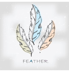 Vintage hand drawn feather vector image