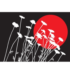Camomiles silhouettes vector image