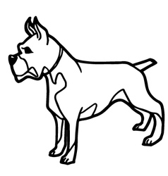 Cartoon Dog Coloring book vector image vector image