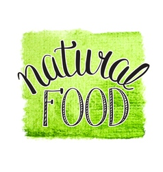 Natural food vector