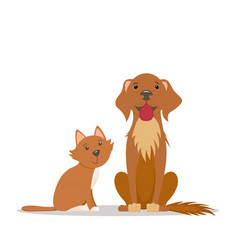 cute red cat big friendly brown dog sitting vector image
