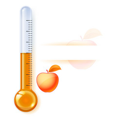 thermometer by seasons autumn on white vector image vector image