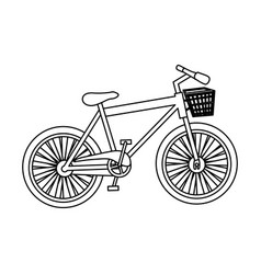 Monochrome contour of bike of girl with basket vector
