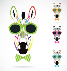 Image of a zebra wear glasses vector