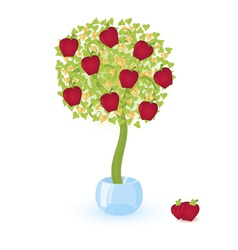 tree with red apples vector image
