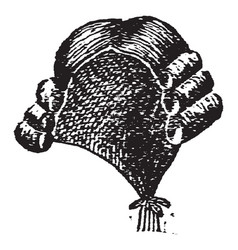 An artificial covering of hair for the head vector