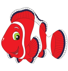 Anemonefish vector