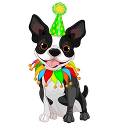 Boston terrier birthday vector