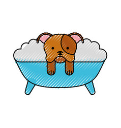Cute dog bathing in the tub vector
