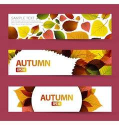 Fresh natural fall horizontal banners vector image