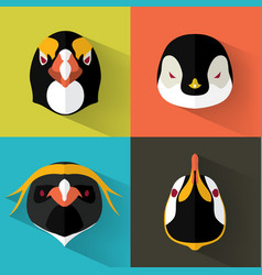 penguin portraits with flat design vector image vector image