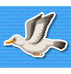 Seagull vector image vector image
