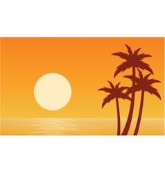 Silhouette of palm with sun seaside vector image vector image