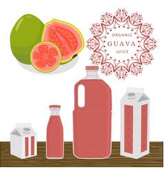 The theme guava vector