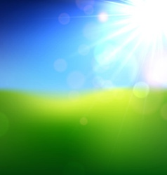 Summer view blurry field background vector