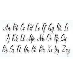 alphabet brush lettering vector image vector image