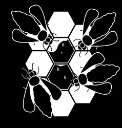 bees and honeycombs vector image